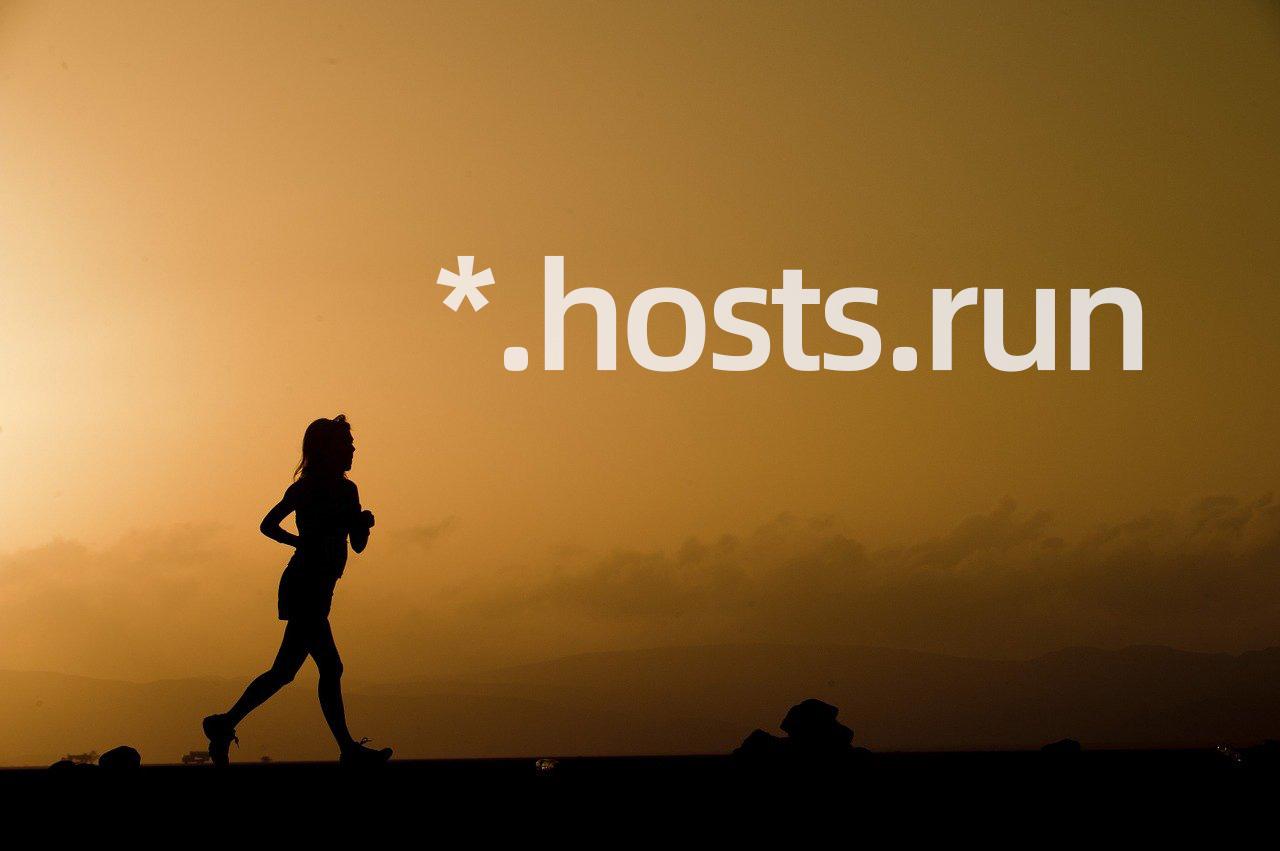 《hosts.run 本地域名》